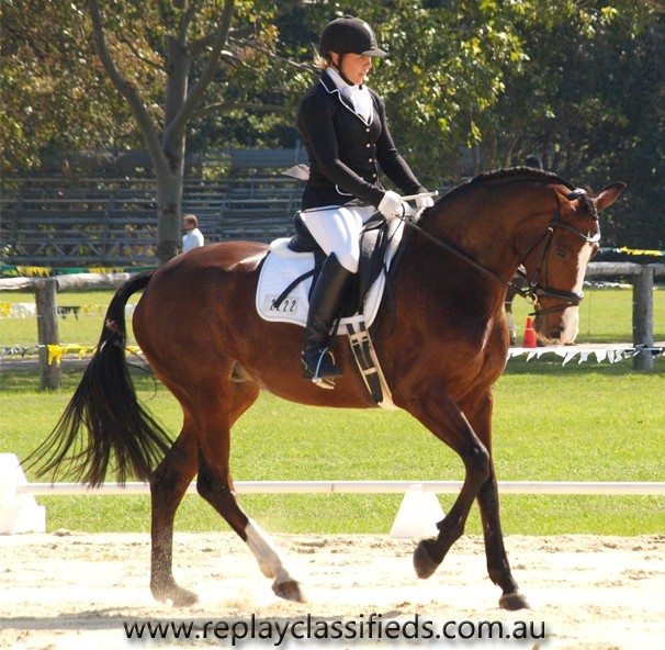 Dressage copyright Replay 2