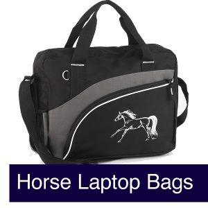 Messenger & Laptop Bags