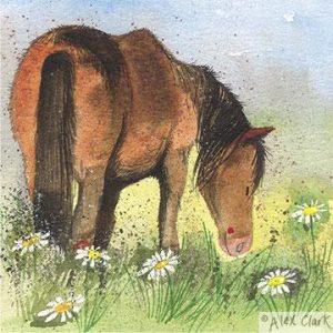 Alex Clark Sunny Day Card