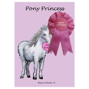 Hairy Ponies Birthday Card