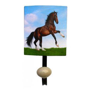 Rearing Horse Hook