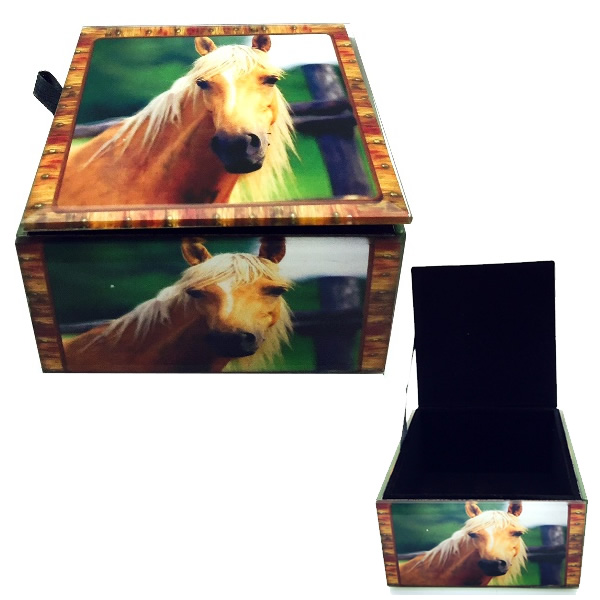 Horse Glass Box