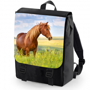 Sunny days horse backpack