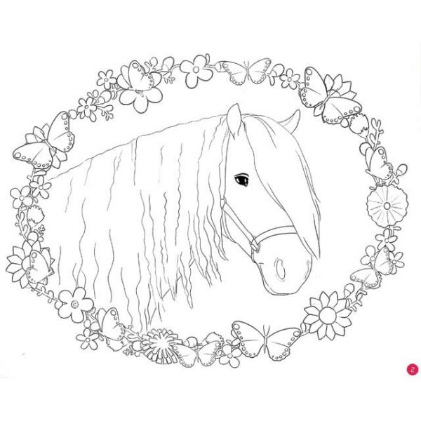Horse Dreams Colouring in book