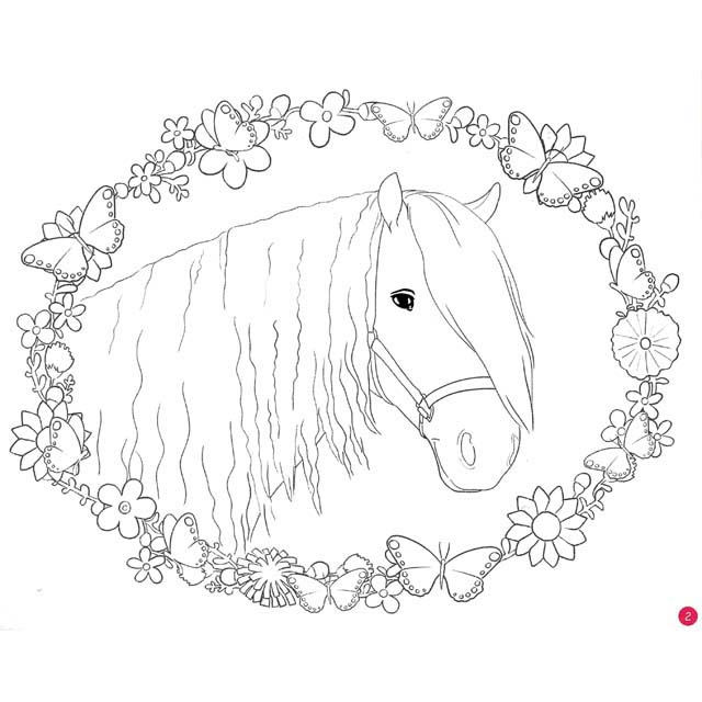 New Horse Dreams Colouring Book - Horse Art | Filly and Co