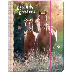 Horse A4 folder