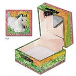 tooth_fairy_horse_box_1