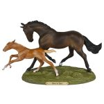 Trail of Painted Ponies Born to run