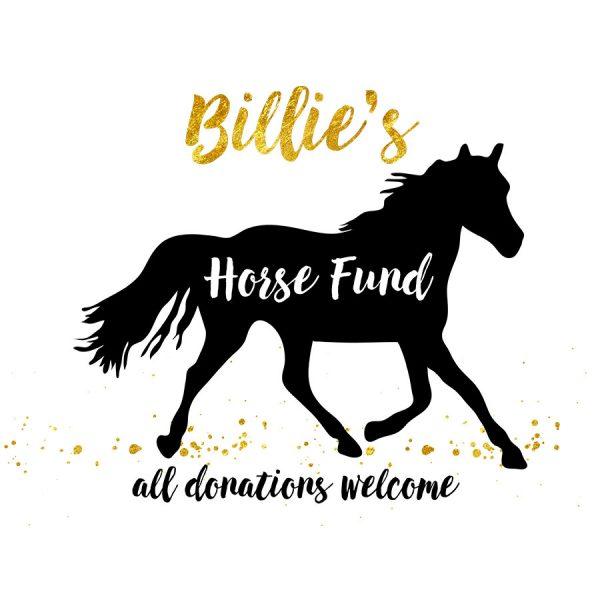 Horse Fund Money Box