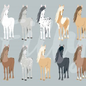 Filly_and_co_Sample_Horses-01