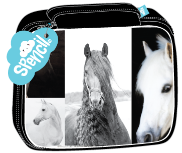 B&W horse lunch box