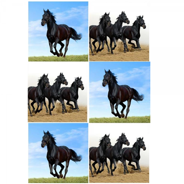 Set of 6 horse glass coasters