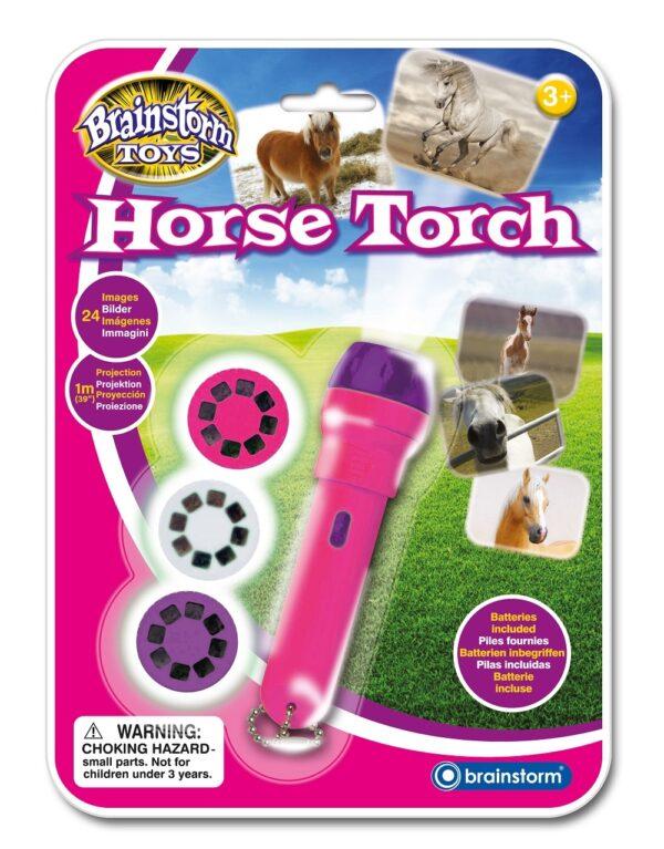 Horse Troch Projector