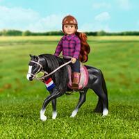 Lori Black Irish Draught Horse