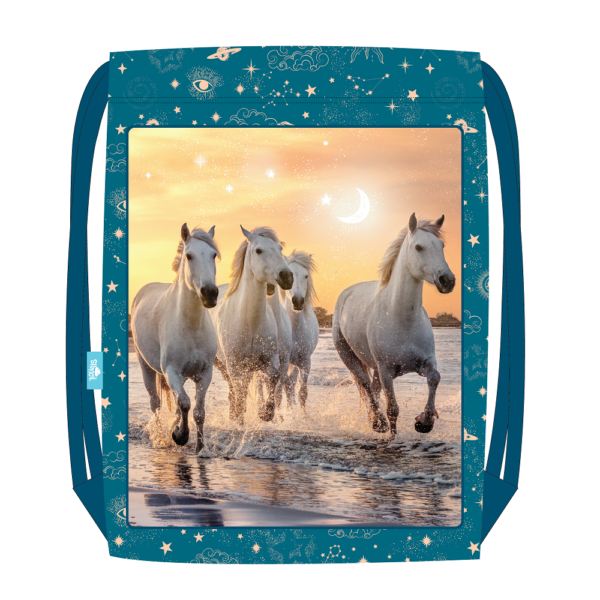 Cosmic Canter Sports Bag